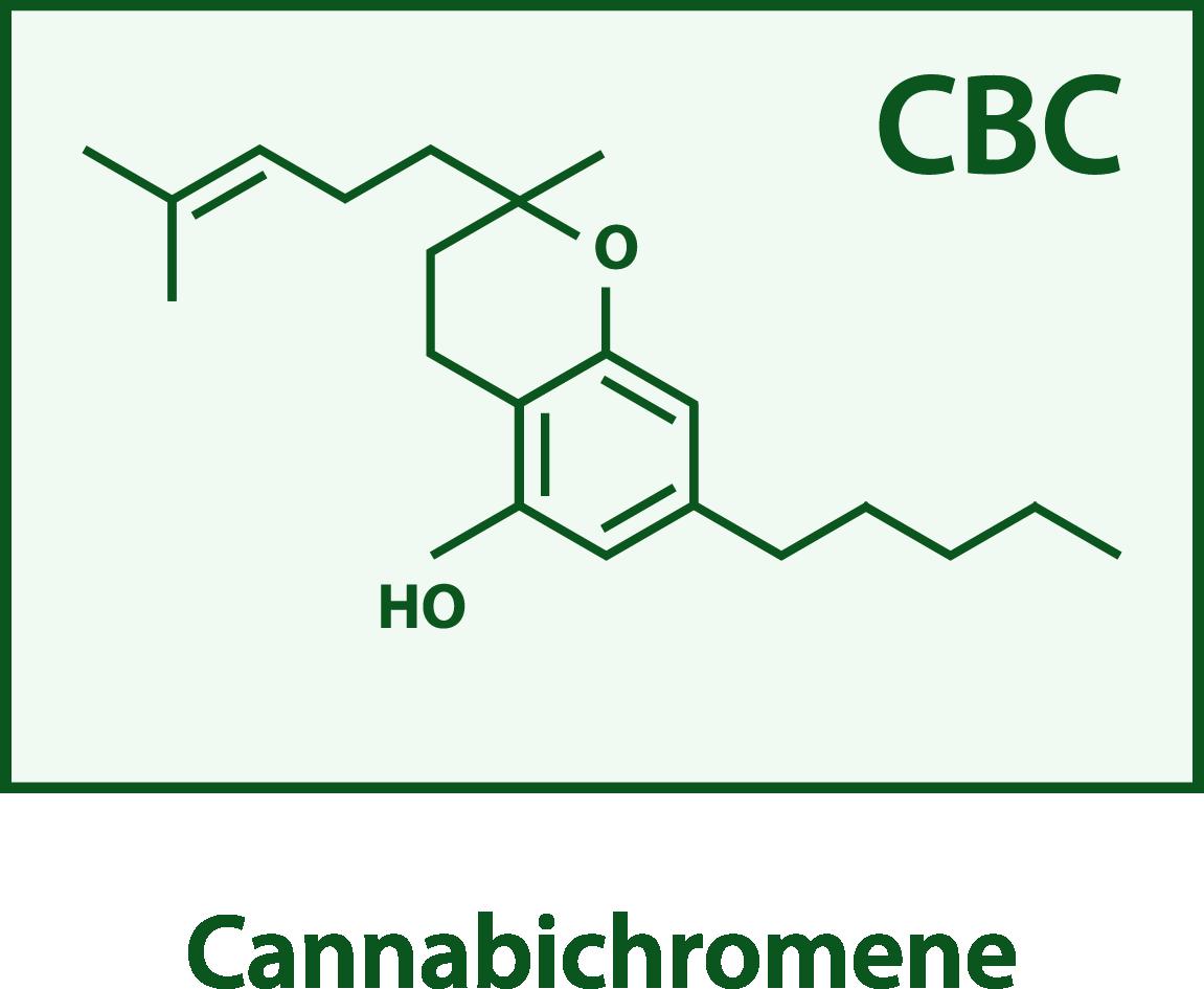 CBC structure