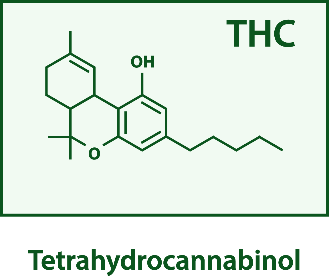 THC structure