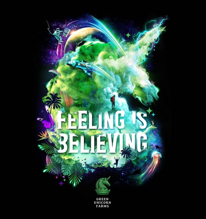 Feeling is believing poster
