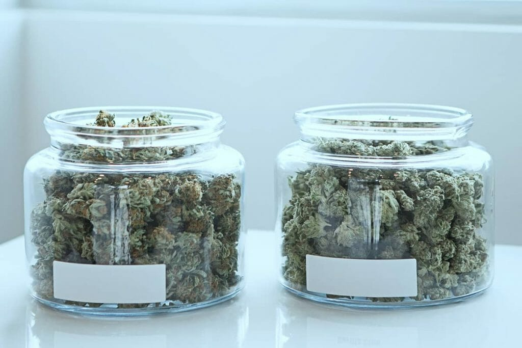 How to store CBD buds